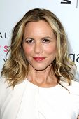 LOS ANGELES - AUG 23:  Maria Bello at the 3rd Annual Women Making History Brunch at Skirball Center