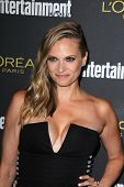 LOS ANGELES - AUG 23:  Vinessa Shaw at the 2014 Entertainment Weekly Pre-Emmy Party at Fig & Olive o