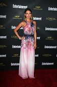 LOS ANGELES - AUG 23:  Natalie Zea at the 2014 Entertainment Weekly Pre-Emmy Party at Fig & Olive on
