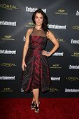 LOS ANGELES - AUG 23:  Bellamy Young at the 2014 Entertainment Weekly Pre-Emmy Party at Fig & Olive