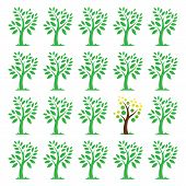 Vector images of an trees.