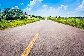 road in grassland