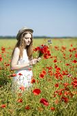 Woman At White Dress Collects Poppy Bouquet