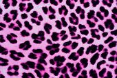 Decorative Leopard Fur Background