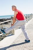 Fit mature man warming up on the pier on a sunny day