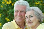 Elderly couple on palm leaves background