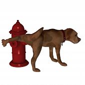 foto of peeing  - A cute little cartoon dog lifting his leg over a fire hydrant - JPG