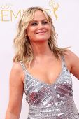LOS ANGELES - AUG 25:  Amy Poehler at the 2014 Primetime Emmy Awards - Arrivals at Nokia Theater at LA Live on August 25, 2014 in Los Angeles, CA