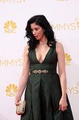 LOS ANGELES - AUG 25:  Sarah Silverman at the 2014 Primetime Emmy Awards - Arrivals at Nokia Theater