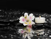 Beautiful orchid with white candle on wet background