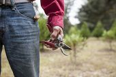 weathered hand holding pruning shears