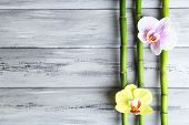 Orchid flowers  and bamboo with pile stones on wooden background