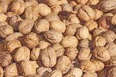 image of walnut  - Walnut background Pile of walnuts in shells - JPG