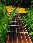 Photo guitar on the grass