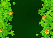 Dark green background with clovers, golden coins and ladybugs