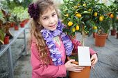 Little girl standing next to a small tree citrus cumquat in the greenhouse