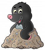 foto of mole  - Happy mole theme image 1  - JPG
