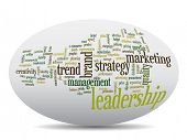 Conceptual business leadership or marketing word cloud isolated