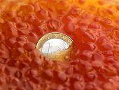 Coin in Caviar