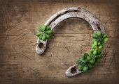 pic of horseshoe  - Old rusty horseshoe and four leaf clover on a wooden background - JPG