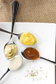 image of condiment  - colorful of variety condiment on spoon put on white plate - JPG