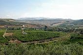 Spanish countryside, Alora.
