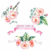 Hand drawn watercolor isolated romantic floral compositions with pink roses, leaves and other flower