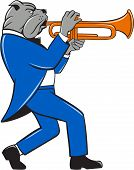 picture of trumpets  - Illustration of a bulldog in a suit blowing trumpet marching walking viewed from the side set on isolated white background done in cartoon style - JPG