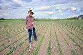stock photo of hoe  - Old man with a hoe standing in the sugar beet field in spring - JPG
