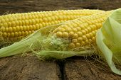 picture of monocots  - Large mature young corn on the wooden background - JPG