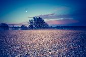 picture of plow  - Vintage photo of plowed field in calm countryside - JPG