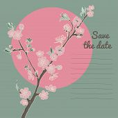 foto of moon-flower  - Flowering cherry branch on background of moon with text - JPG