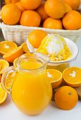 foto of pitcher  - Freshly squeezed orange juice in the pitcher and oranges on the table - JPG