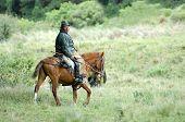 The Latin Horseman