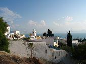 Sid Bou Said In Tunisia