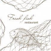Постер, плакат: Fish caught in the net