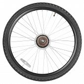 Постер, плакат: Rear Wheel For Mountain Bike