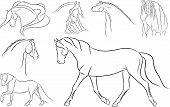 Various Artistic Horses