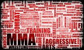 MMA Mixed Martial Arts Fighting System as Sport