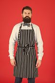 Hipster Waiter. Hipster Cafe Concept. Man With Beard Cook Hipster Apron. Hipster Chef Cook Red Backg poster