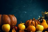 A Bunch Of Pumpkins And Apples. Happy Thanksgiving Day Background, Wooden Table Decorated With Pumpk poster