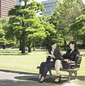 Two businesswomen eating lunch in park