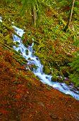 stock photo of upstream  - Vivid colorful falls upstream from Multnomah Falls - JPG