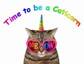 The Cat Unicorn Wears Blue Sunglasses With Inscription Meow. Time To Be Caticorn. White Background.  poster
