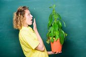 Botany Is About Plants Flowers And Herbs. Girl Hold Plant In Pot. Take Good Care Plants. Plants That poster