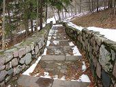 Winter Stone Walkway