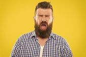 Man Bearded Hipster With Sneezing Face Closed Eyes Close Up Yellow Background. Brutal Hipster Sneezi poster