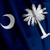 South Carolina Flag Closeup