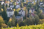 View Of Wiesbaden