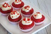 pic of red velvet cake  - Fresh baked red velvet cupcakes with vanilla icing - JPG